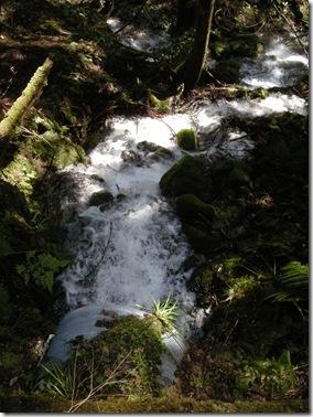 清らかな水の流れ