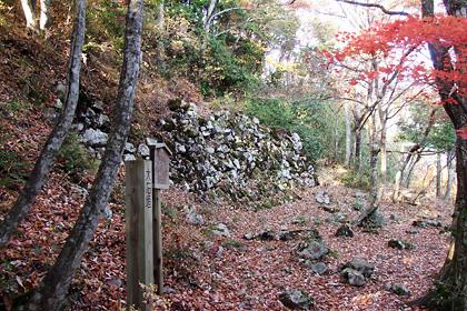 紅葉の小谷山散策