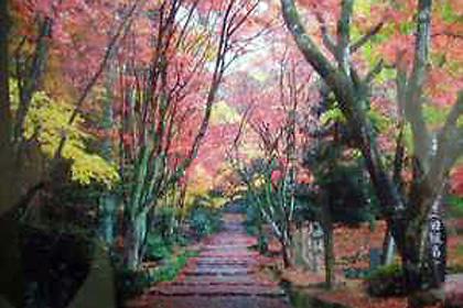 小谷山の紅葉